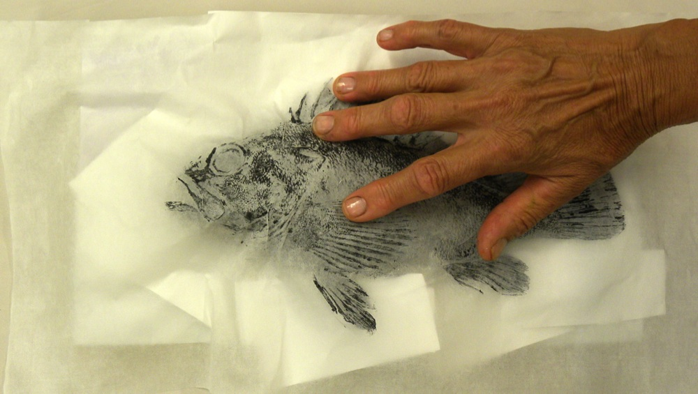 3-pressing-rice-paper-onto-inked-fish