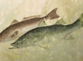 two-down-snook-and-redfish_0